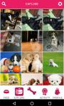 PetSutra - Pet Lovers App screenshot 3/3