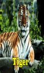 Tiger Free screenshot 1/3