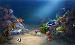 Golden Live HD Fish Wallpaper screenshot 3/4