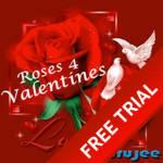 Valentines Rose_TRYBUYF screenshot 1/3