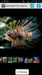 Animated Fish Tank Wallpaper screenshot 1/4