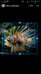 Animated Fish Tank Wallpaper screenshot 3/4