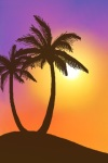 Sunset with Palm Tree Live Wallpaper screenshot 2/2
