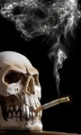 Smoking Skull Live Wallpape screenshot 2/3