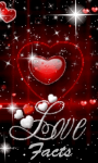Love Facts 240x400 screenshot 1/1