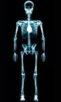 Human X Ray Scanner screenshot 3/6