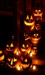 Halloween Lights Live Wallpaper screenshot 1/3