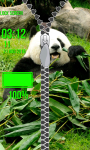 Panda Zipper Lock Screen Free screenshot 5/6