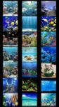Aquarium Wallpapers by Nisavac Wallpapers screenshot 1/4