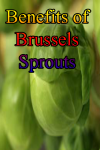 Benefits of Brussels Sprout screenshot 1/4