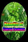 Curry Leaves Benefits screenshot 1/3