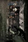 Secret  Chapter  2 screenshot 2/2