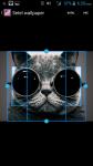 Free Wallpaper Cats Kittens screenshot 3/4