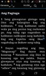 Hiligaynon Bible - Ang Biblia screenshot 1/3