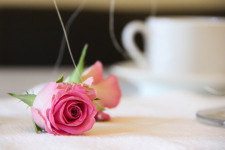 Tips to be Romantic screenshot 2/3