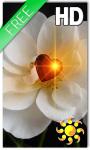 Heart Rose Live Wallpaper screenshot 1/2