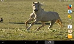 Wild Nature Live screenshot 2/6
