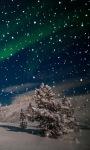 Night Snow Live Wallpaper screenshot 1/3