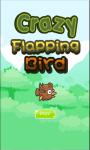 Crazy Flapping Bird screenshot 1/3