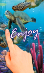 Sea Turtles in your phone LWP free screenshot 2/3