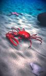 Beach Crab Free screenshot 3/5