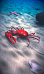 Beach Crab Free screenshot 4/5