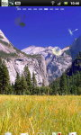 Pretty Yosemite National Park Live Wallpaper screenshot 4/6