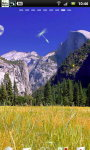 Pretty Yosemite National Park Live Wallpaper screenshot 5/6