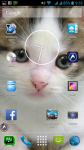 Free Download Cat Wallpaper screenshot 6/6