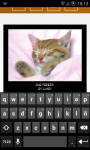 WhatsApp Cats screenshot 4/6