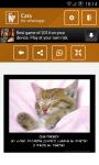 WhatsApp Cats screenshot 5/6