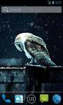 Owl Under Snowfall Live Wallpaper screenshot 1/4