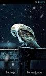 Owl Under Snowfall Live Wallpaper screenshot 2/4