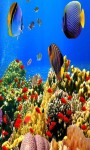 Aquarium Live Wallpaper Frames screenshot 1/5