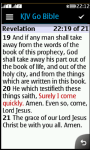 JAVA KJV Bible screenshot 3/3