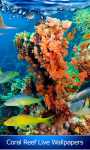 Coral Reef Live Wallpapers Free screenshot 1/6