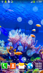 Coral Reef Live Wallpapers Free screenshot 2/6