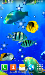 Coral Reef Live Wallpapers Free screenshot 4/6