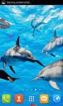 Dolphin Live Wallpaper Best screenshot 4/5