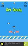 Birdie Slam Game screenshot 2/4