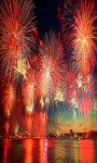 Indian Festivals photo screenshot 2/4