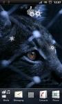 Mysterious Black Cat Live Wallpaper screenshot 1/3
