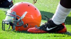 Cleveland Browns Fan screenshot 3/3