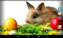 Easter Bunny Live screenshot 3/4