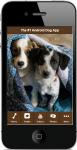 Dogs For Beginners screenshot 1/5