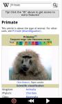 Monkeys : Funny Wild Animals screenshot 3/6