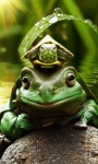 Frog King Live Wallpaper screenshot 2/3
