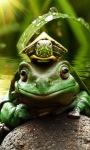 Frog King Live Wallpaper screenshot 3/3