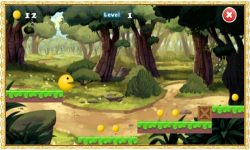 Pac Run Adventure screenshot 3/3