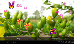 3D Apricot Blossom Live Wallpaper screenshot 2/5